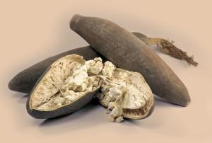 baobab frutti